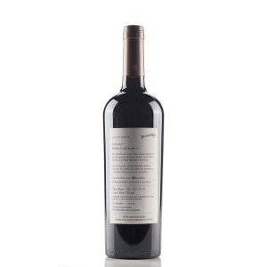 Vino BordeRío Injusto Blend (Merlot - Syrah) 2017