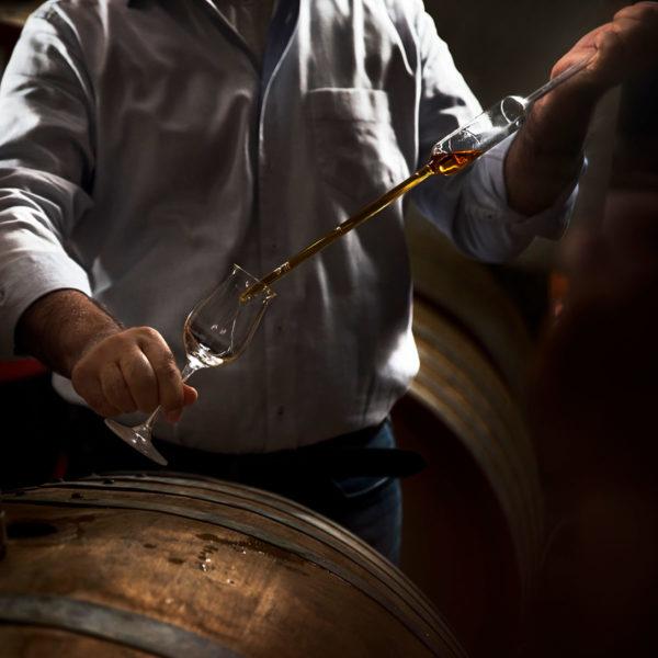 experiancia-winemaker-por-un-dia